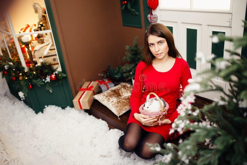 Befruktningen är det lyckliga nya året och glad jul royaltyfri fotografi