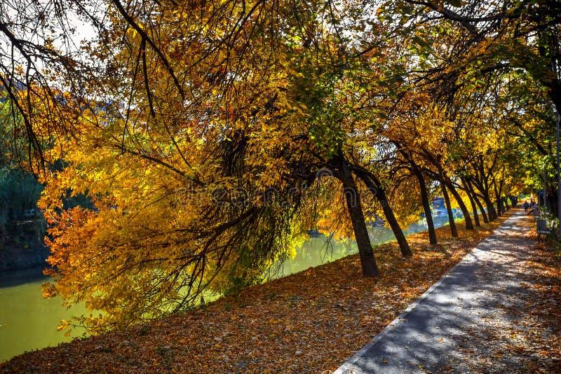 Bega River, Timisoara, Romania. Bega river shore seen on a beautiful autumn day, Timisoara, Romania royalty free stock photos