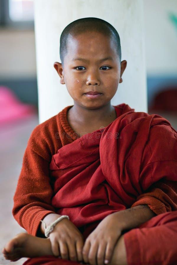Beginnermonnik, Myanmar stock afbeeldingen