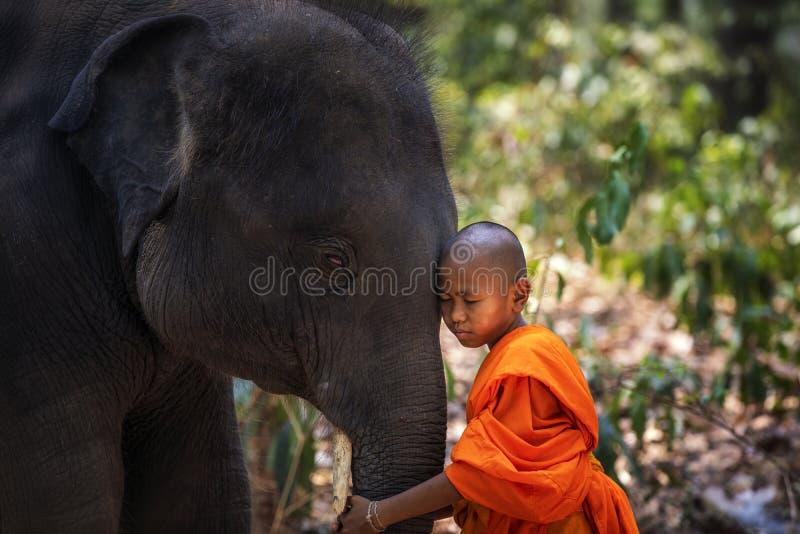 Beginners of monniken en olifanten Beginner de status van Thai en grote olifant met bosachtergrond , Het District van Tha Tum, Su royalty-vrije stock foto's