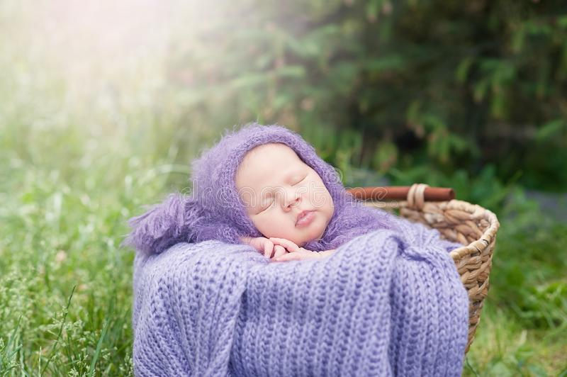 17 day old Smiling newborn baby is sleeping on his stomach in the basket on nature in the garden outdoor royalty free stock image