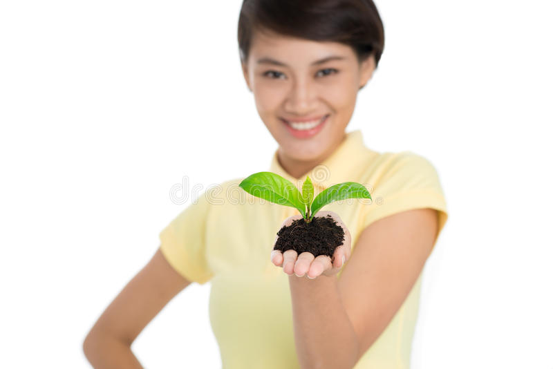 Beginning of new life!. Woman holding growing plant in hands royalty free stock photo