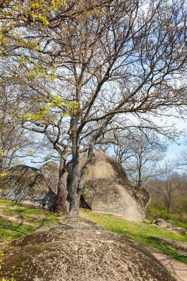 Beglik tash -古老巨石Thracian圣所 免版税库存图片