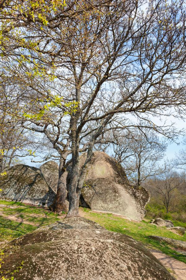 Beglik-tash - altes Megalithen-Thracian-Schongebiet lizenzfreies stockbild