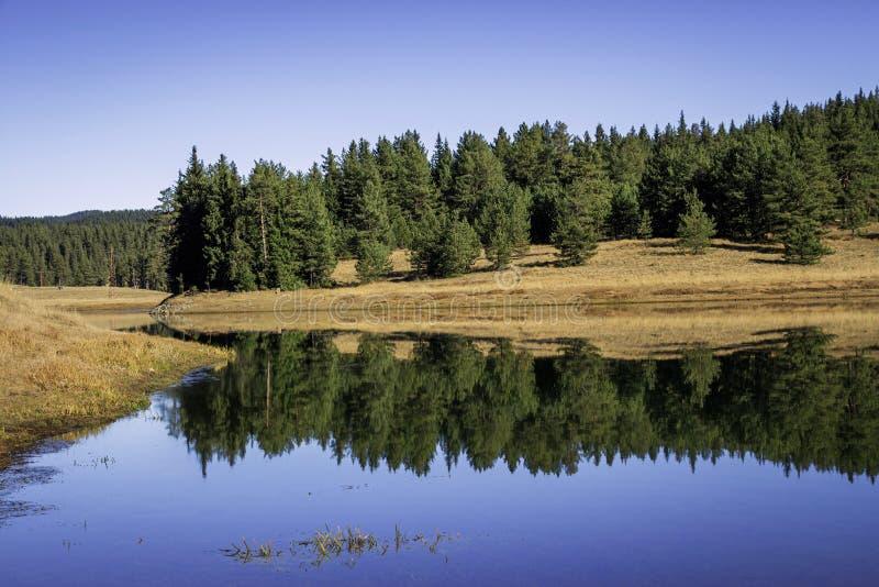 Beglika水坝,保加利亚 库存照片