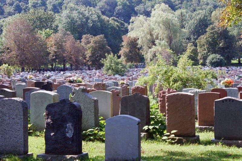 Begraafplaats. royalty-vrije stock foto