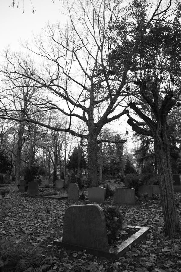 Begraafplaats stock afbeeldingen