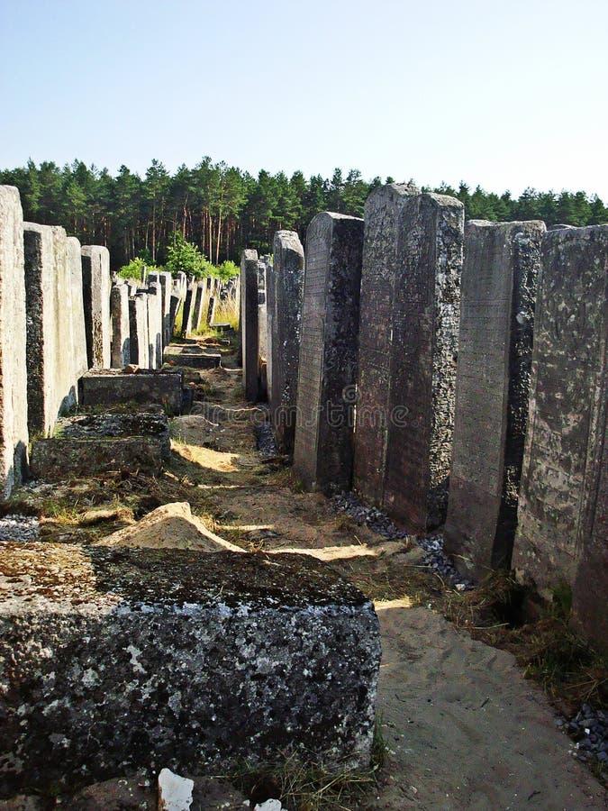 Begraafplaats in Brody, de Oekraïne stock foto's