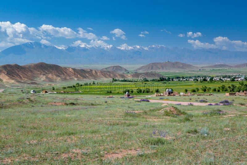 Begraafplaats in Centrale Aisa stock afbeelding