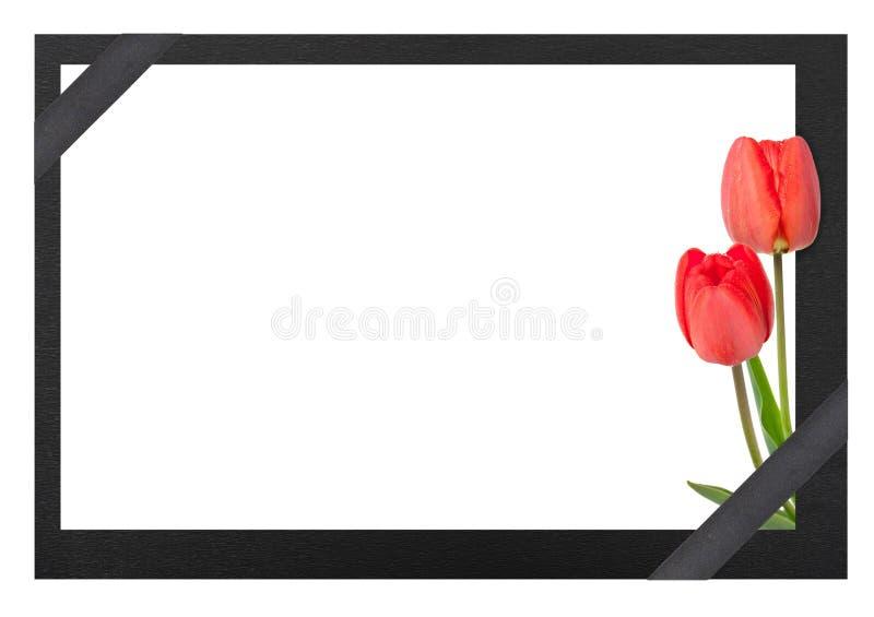 Begrafeniskader met tulpen stock fotografie