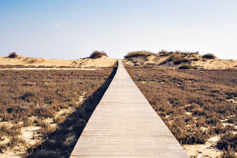 Begrepp av ambition, prestationen och den långa vägen - trästrandstrandpromenadbana arkivfoto