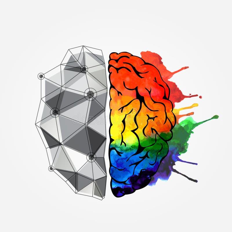 Begrepp av den mänskliga hjärnan royaltyfri illustrationer