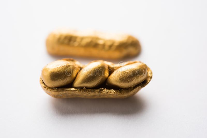 Begrepp av egenart, lycka, värde, exclusivity och bättre val Guld- jordnöt- eller jordningsmutter som ut står bland normal peanu arkivbild