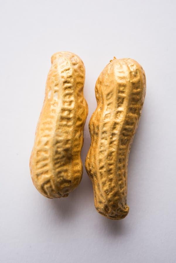 Begrepp av egenart, lycka, värde, exclusivity och bättre val Guld- jordnöt- eller jordningsmutter som ut står bland normal peanu royaltyfri foto