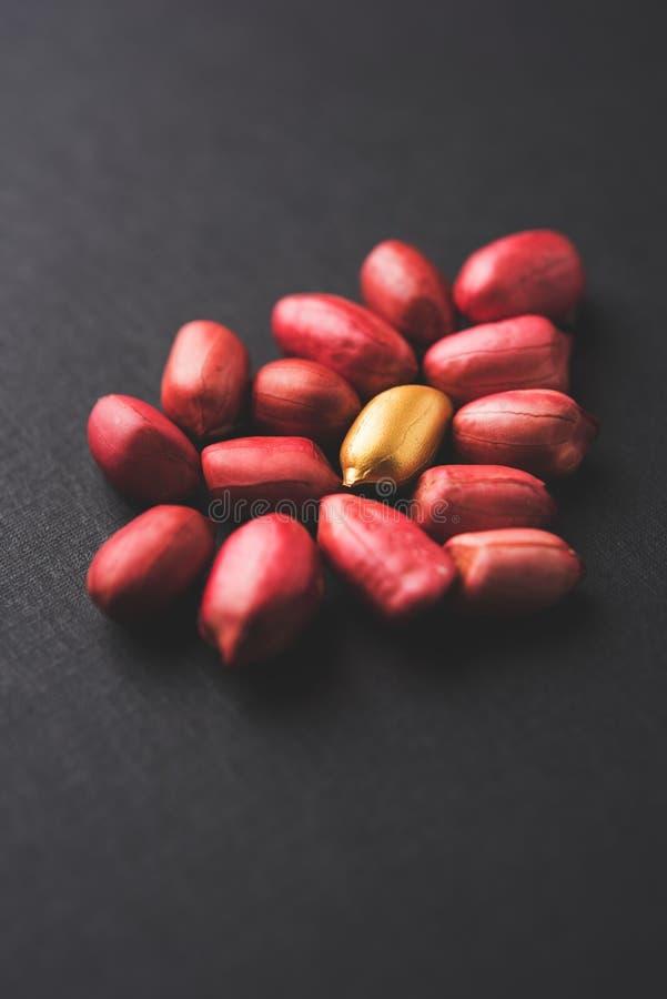 Begrepp av egenart, lycka, värde, exclusivity och bättre val Guld- jordnöt- eller jordningsmutter som ut står bland normal peanu royaltyfria foton