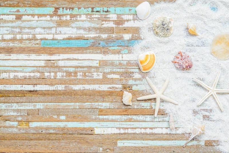 Begrepp för bakgrund för sommartid Havsskal och sjöstjärna på bakgrund för retro tappning för grunge en trä Sjöstjärna med havssk arkivbild