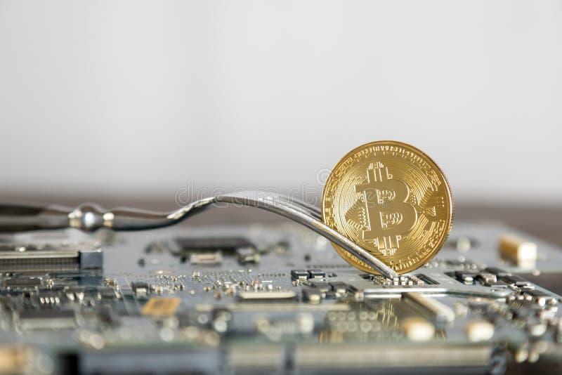 Begrepp för Bitcoin Digital Cryptocurrency hårt gaffeländring faktiskt royaltyfria foton