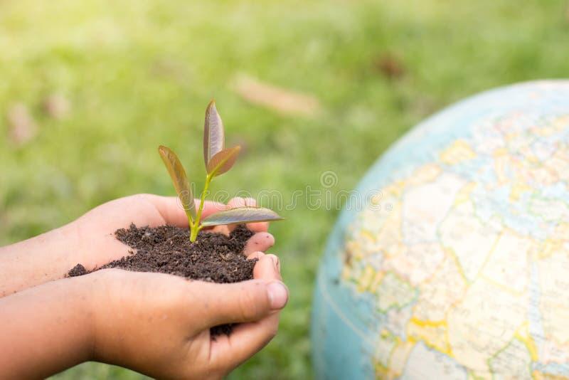 Begrepp för dag för världsmiljö med att plantera för träd och grön jord royaltyfria bilder