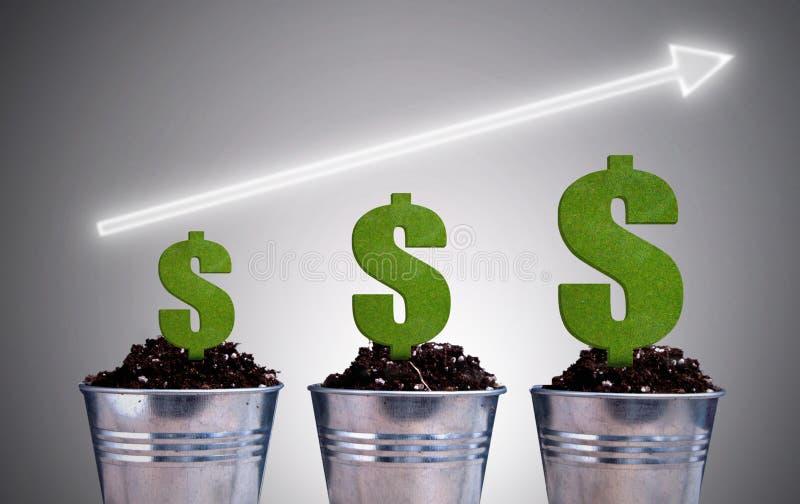 Begrepp för dollarväxttillväxt royaltyfria bilder