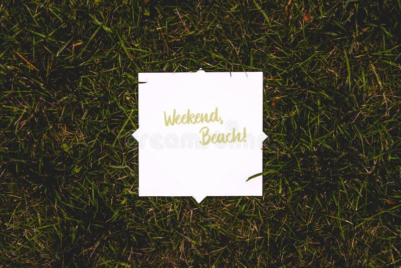 Begrepp för lägenhet för bästa sikt lekmanna- av den vita ramfyrkanten på gräsmattatextur för grönt gräs med kopieringsutrymmemod royaltyfri foto