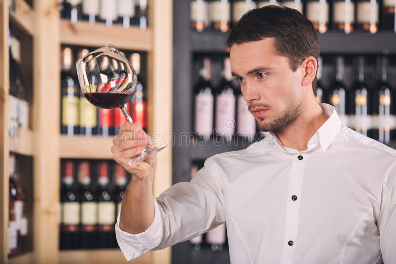 Begrepp för lager för drink för alkohol för Somellier vinaffär royaltyfria foton