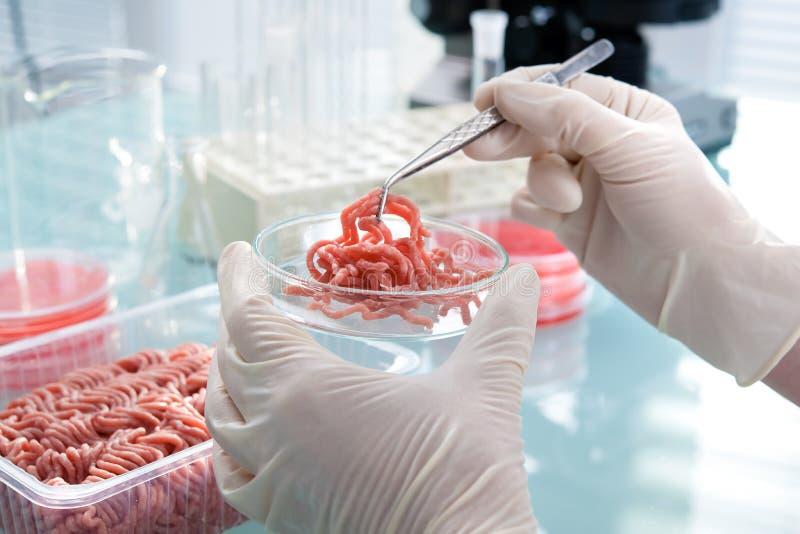 Begrepp för matsäkerhet arkivfoto
