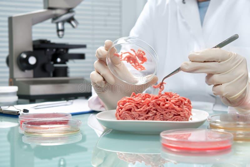 Begrepp för matsäkerhet royaltyfri fotografi
