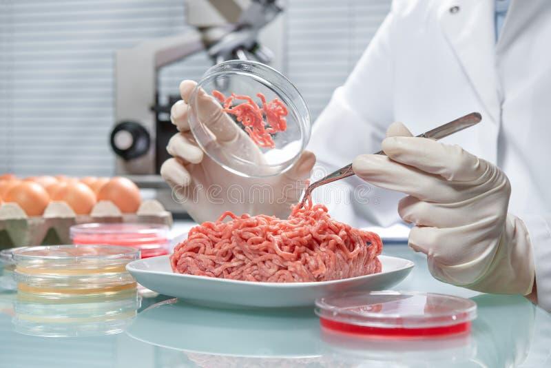Begrepp för matsäkerhet arkivbild