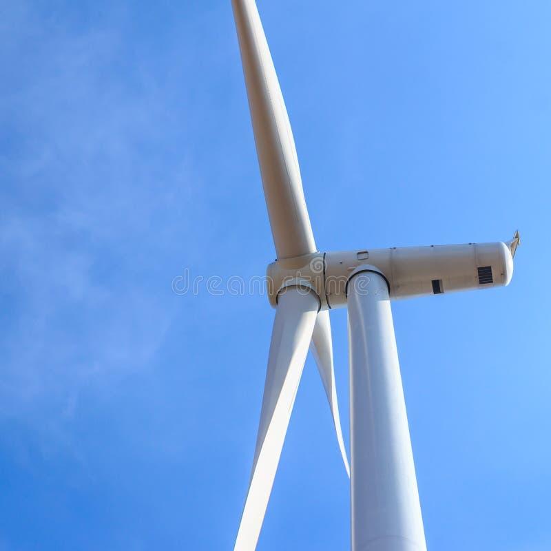 Begrepp för ren energi för vindturbin royaltyfria bilder