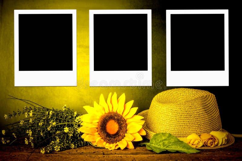 Begrepp för sommartid för tre ögonblickfotoramar royaltyfri fotografi