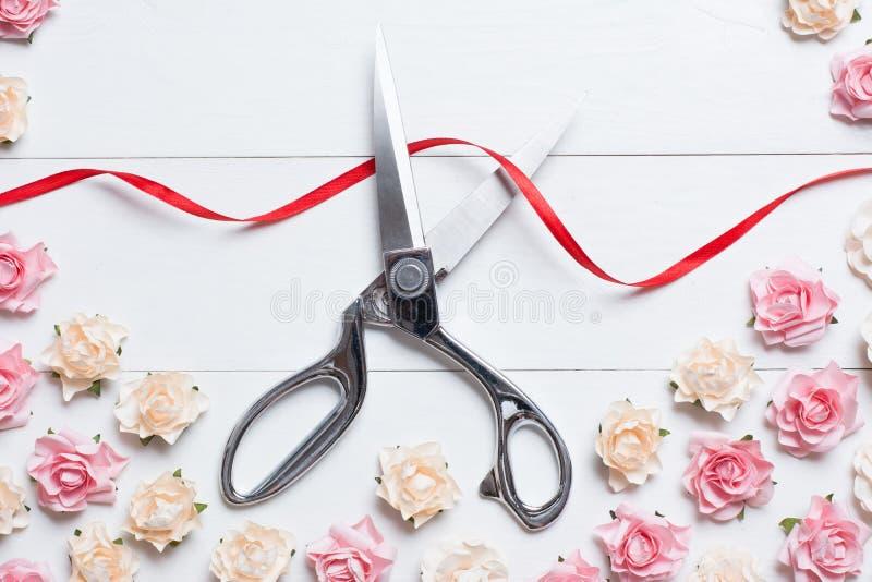 Begrepp för storslagen öppning med sax som klipper det röda bandet på vit royaltyfri fotografi