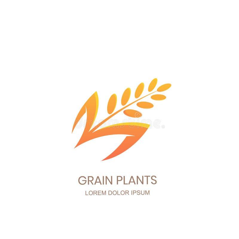Begrepp för tecken för kornväxtlogo Ris vete, sädes- symbol för råg Vektordesignen för mjölpacken, brödetiketten, bageri shoppar stock illustrationer