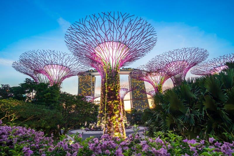 Begrepp, gränsmärke och populärt för Singapore lopp för turist- dragningar royaltyfri fotografi
