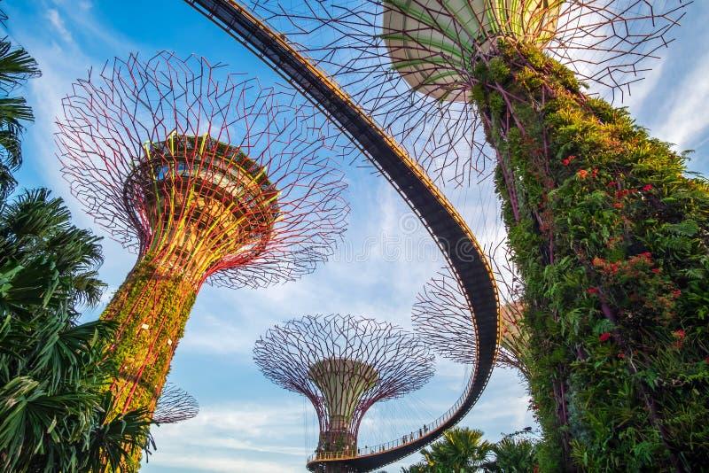 Begrepp, gränsmärke och populärt för Singapore lopp för turist- dragningar royaltyfria foton