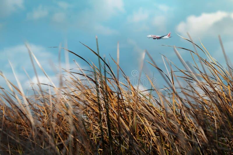 begrepp isolerad trans Suddigt flygplanflyg i den molniga blåa himlen på Sunny Day arkivbild