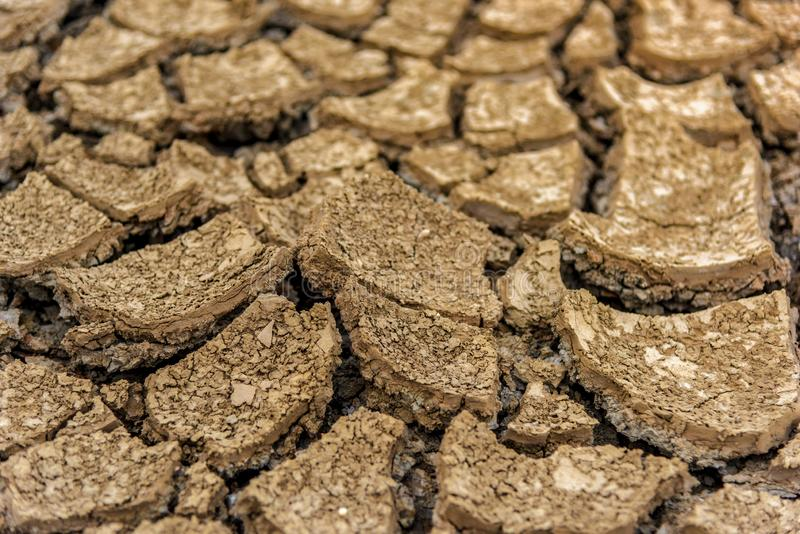 Begreppet av den naturliga torkan av miljön på jord: torr jord, sprucken jord med jorderosion blir röd som inte är arkivfoton