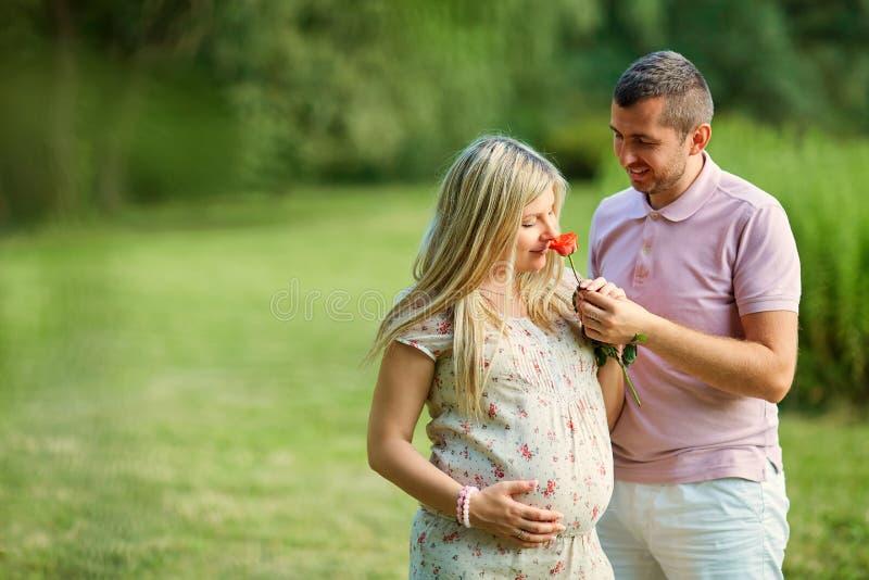 Begreppet av havandeskap, nytt liv, förälskelse och mjukhet Pregnan royaltyfri foto