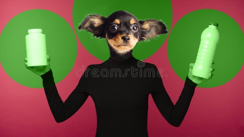 Begreppet av miljöbelastning vid plast- Collage som kombinerar en kvinna och hunds huvud Ett ledset tecken rymmer plast- arkivbild
