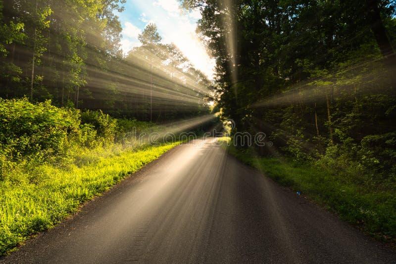 Begreppet av någon som går en tuff väg i liv, men ljuset, lyckan och räddningen, är precis framåt på den nästa kurvan arkivfoton