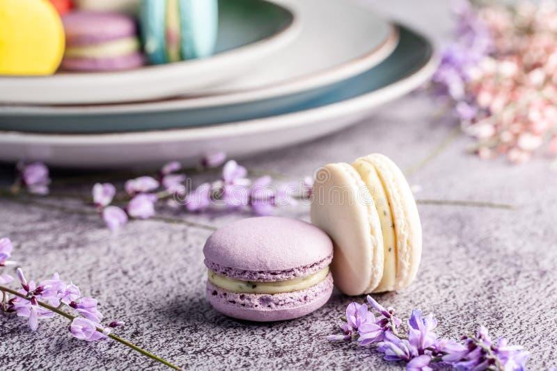 Begreppet av skandinavisk kokkonst Fransk macaronefterrätt Handgjort olikt format för skandinaviska plattor Bästa sikt, kopiering royaltyfri foto