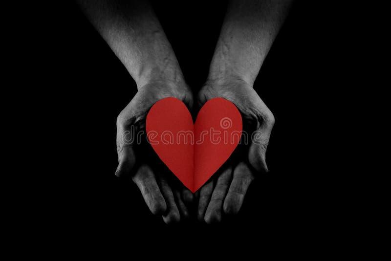 Begreppet för portionhanden, mannens händer gömma i handflatan upp att rymma en röd hjärta som ger förälskelse, omsorg och servic arkivbilder