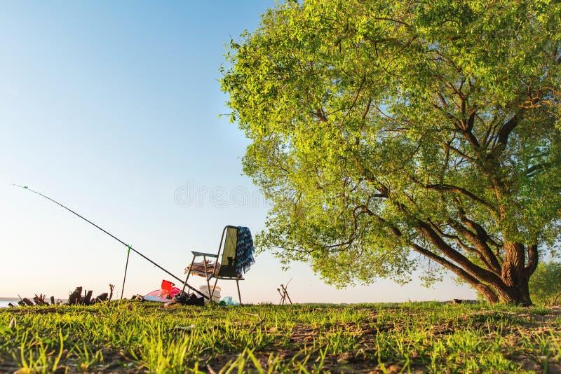 Begreppsfiske är hobbyen i öppen luft Metspö och fiskestol på sjökust under stort grönt träd på klar varm dag royaltyfri fotografi