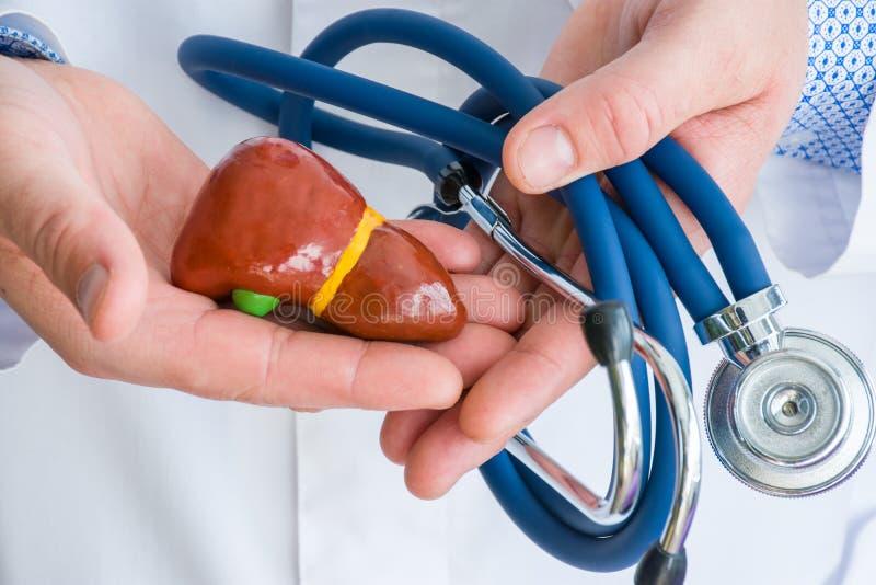 Begreppsfotodiagnostik och behandling av sjukdomar av lever och gallbladderen Iklätt vitt labblag för doktor i håll f för en hand arkivbilder