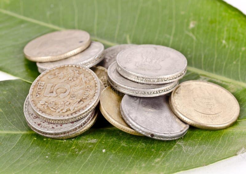 Begreppskonst som visar gräsplan och rena pengar royaltyfri foto