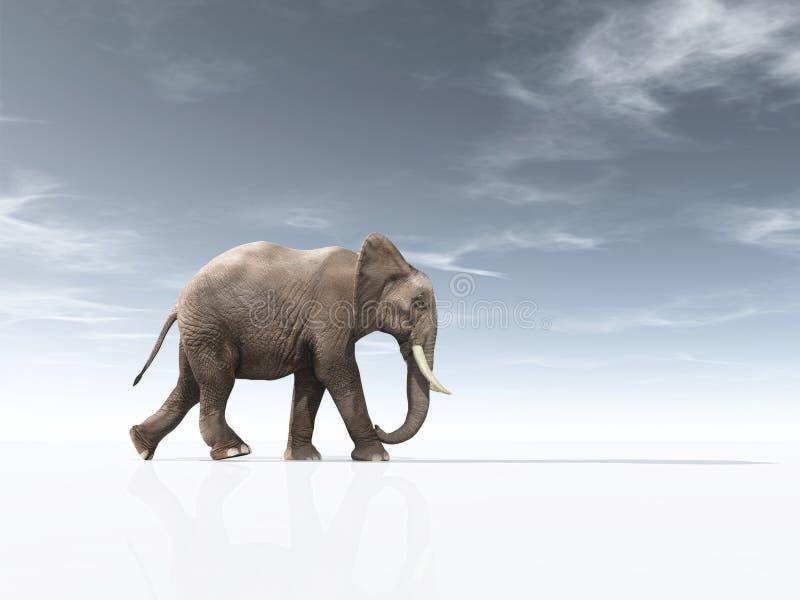 Begreppsmässig bild med en afrikansk elefant vektor illustrationer