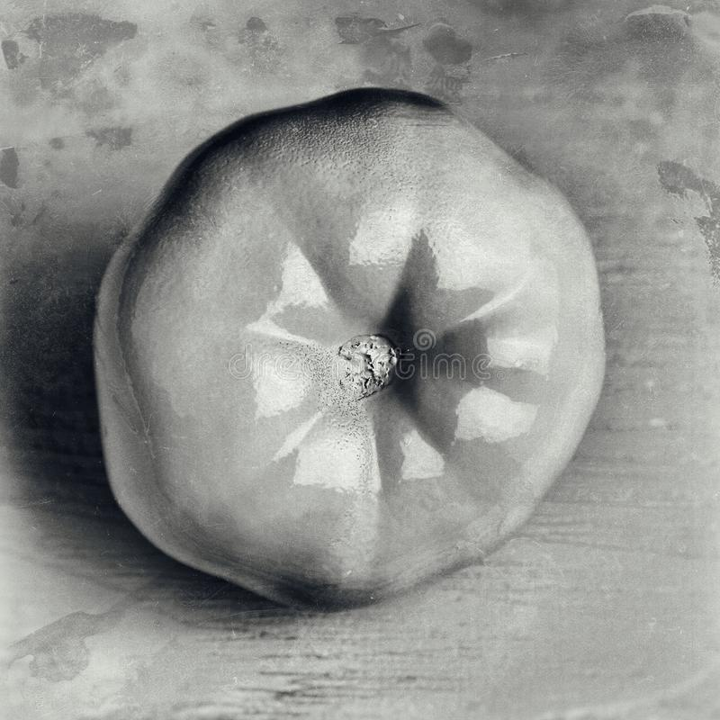 begreppsmässig garnering av ett kafé: vit målad tomat på träbakgrund Svartvit planlagd tappningfärg arkivbilder