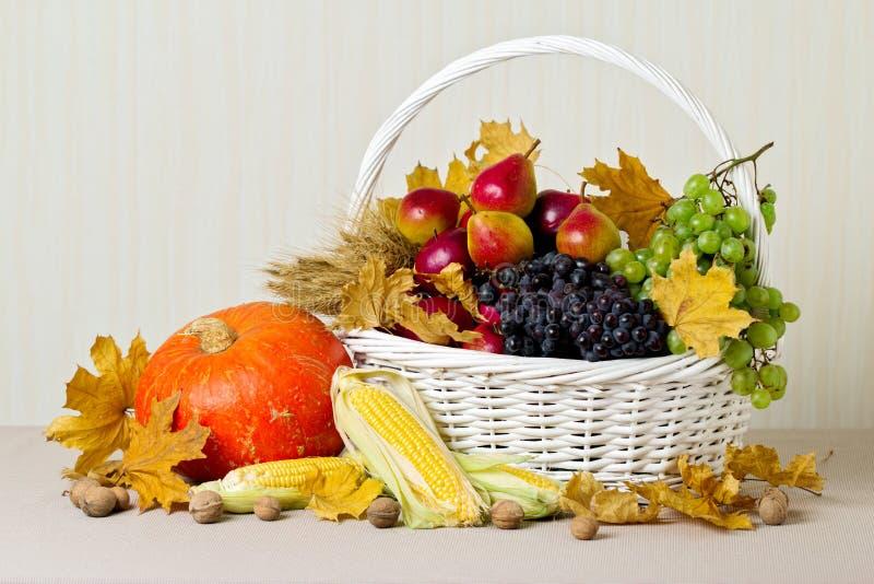 Begreppsmässigt skörddiagram med olika grönsaker på fältet Stilleben av pumpor och havre, druvor och nu arkivfoto