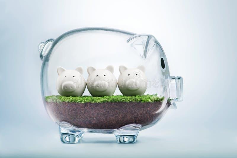 Begroting die en geldconcept plannen toewijzen royalty-vrije stock afbeelding