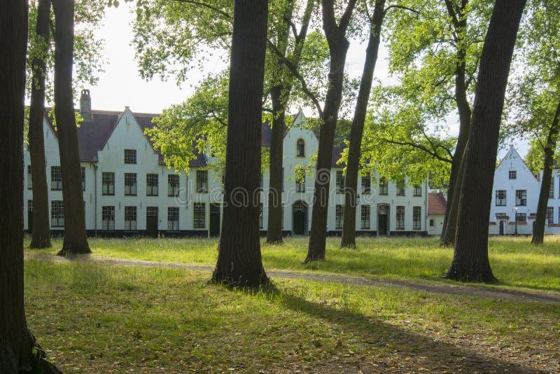 Beguinage Begijnhof di Bruges, Belgio immagini stock