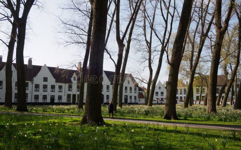 Beguinage in Brugge, België royalty-vrije stock afbeelding